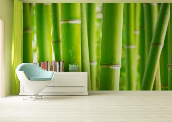 Fototapet Bambus 1
