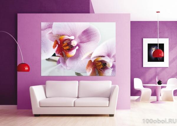 Fototapet Orhidee FTM 0489