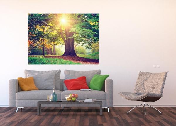 Fototapet Copacul Urias 2