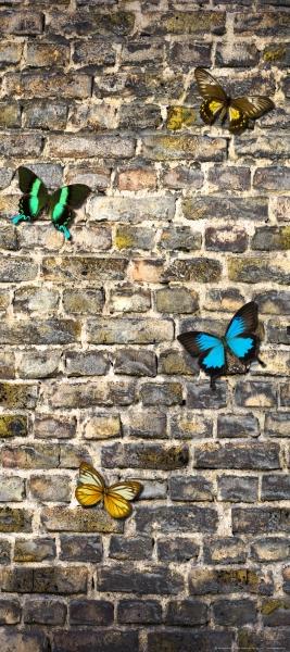 Fototapet Fluturi pe Zid de Piatra 0