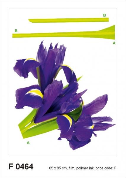 Sticker Iris Violet - 65x85cm - F0464 0