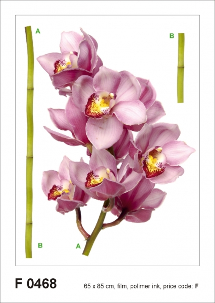 Sticker Orhidee - Orchid violet - 65x85cm - F0468