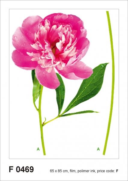 Sticker Bujor - Peony - 65x85cm - F0469