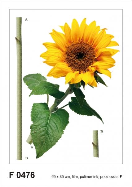 Sticker Floarea Soarelui - Sun flower - 65x85cm - F0476 0